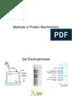 Methods in Protein Analysis Biochemistry