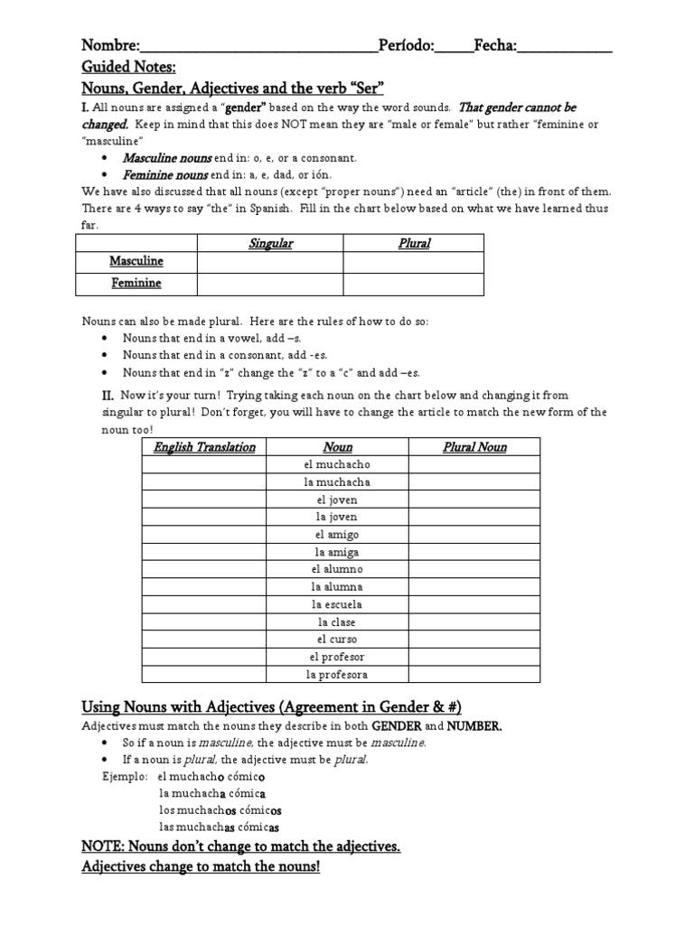 Guided Notes Adjective Noun Agreement And The Verb Ser Grammatical