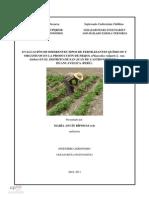 Ancín - 2011 - Evaluación de Diferentes Tipos de Fertilizantes Químicos y Organicos en Frijol