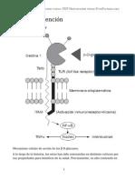 Setas y prevención.pdf