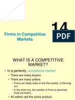 14-firms_competitive.ppt