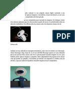Cámara web.docx