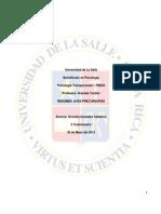 Resumen Aves Precursoras.docx