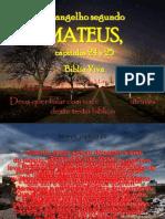 Evangelho de Mateus 101449
