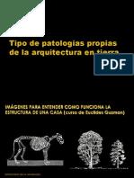 Tipo de Patologías Propias de La Arquitectura en Tierra
