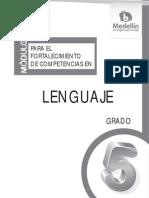 Investigacion Lenguaje Antioquia