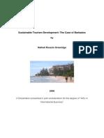 Disertation (Masters)