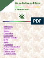 Amstony - Manual Basico de Cultivo
