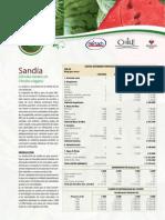 Ficha Sandia