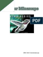 Belajar Minescape
