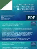 Caracteristicas y Clasificación de Los Perfiles de Flujo