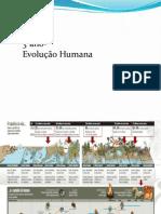 High 3-Evolução Humana