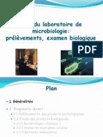 Cours Ifsi Role Du Laboratoire de Microbiologie Nathalie Grall 1