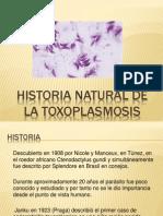 Historia Natural de La Toxoplasmosis (1)
