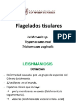 T.cruzi_Leishmania_y_Trichomonas.ppt