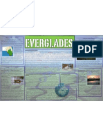 The Everglades Are a Prime Example of a Wetland. Wetlands