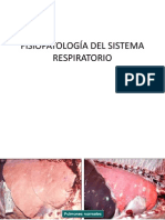 2. Fisiopatologia respiratoria