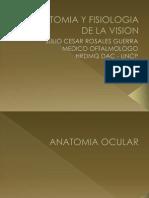 Anatomia y Fisiologia de La Vision