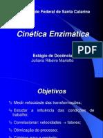 Apresentacao Cinetica Enzimatica Ju[1]