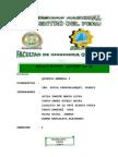 011B - Reacciones Quimicas II
