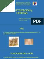 Presentación de Cicatrización
