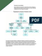ESTRUCTURA ORGANICO FUNCIONAL DE UNA EMPRESA.pdf
