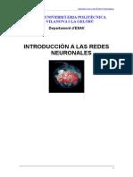 2014 Introducción a Las Redes Neuronales