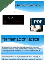 fermentacionlactica-