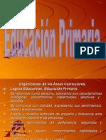 Diapositivas de Currículo