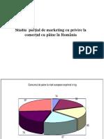 Marketing Present studiu Paine