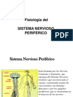 7 Fisiologia Sistema Nervioso Periferico
