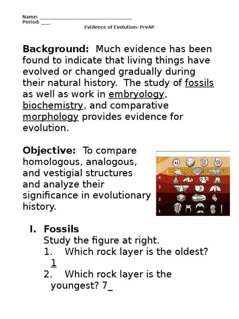 worksheet Biochemical Evidence For Evolution Worksheet evidence of evolution worksheet murch 2013answers homology biology earth life sciences