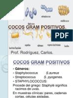 Coco Gram Positivos
