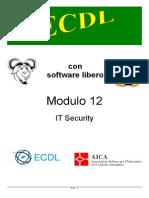 12 It Security