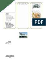 Leaflet OMSK