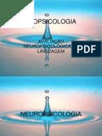 NEUROPSICOLOGIA-apresentação
