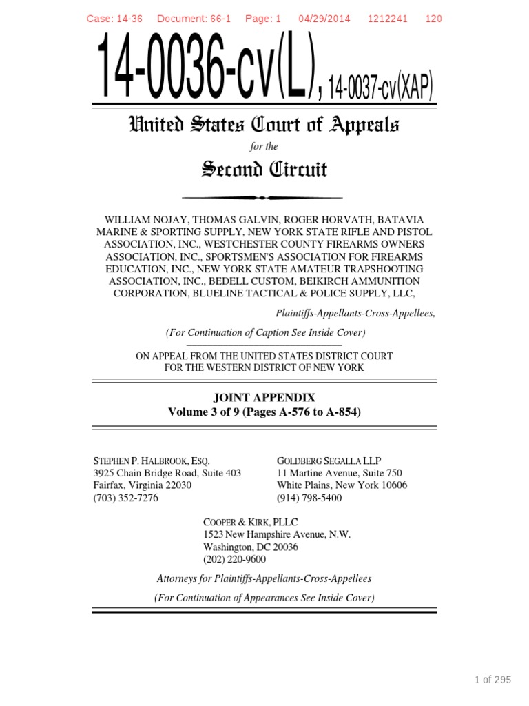 NYSRPA V Cuomo Record On Appeal Volume 3