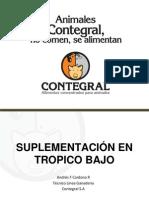 Suplementacion en Tropico Bajo Seminario Unisucre 2013