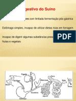 Apresentação Sistema Digestivo Dos Suinos
