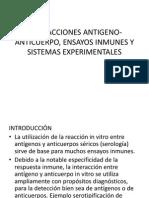 5 Interaccionesantigeno Anticuerpoensayosinmunesysistemasexperimentales 120811150007 Phpapp01