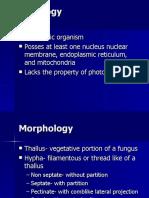 Eukaryotic Organism Posses at Least One Nucleus Nuclear Membrane, Endoplasmic