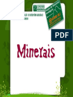 Minerais Novo