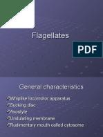 Flagellates