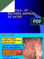 148116788 Vesicula Vias Biliares Ampolla de Vater Ppt