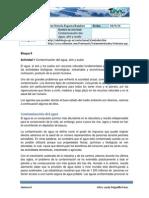 Actividad 1 Contaminacion Del Agua Aire y Suelo (1)