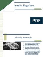 Parasitic Flagellates