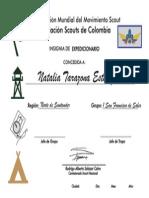 Certificado Expedicionario Norte de Santander