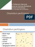Clostridium Perfringens Eq 27