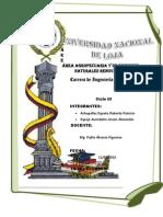Espejo , Achupallas Resumenes Textura y Floculacion. II