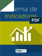 FNQ - Sistema de Indicadores.pdf